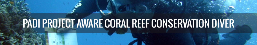 PADI Project Aware Coral Reef Conservation